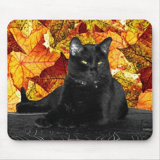 Hojas del gato negro y de la caída alfombrilla de raton