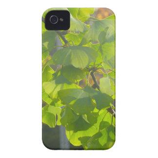 Hojas del Gingko en sol del otoño Carcasa Para iPhone 4