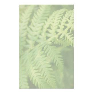 """Hojas del helecho, verdes claras. folleto 5.5"""" x 8.5"""""""