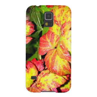 Hojas del Hydrangea del otoño Carcasa Galaxy S5