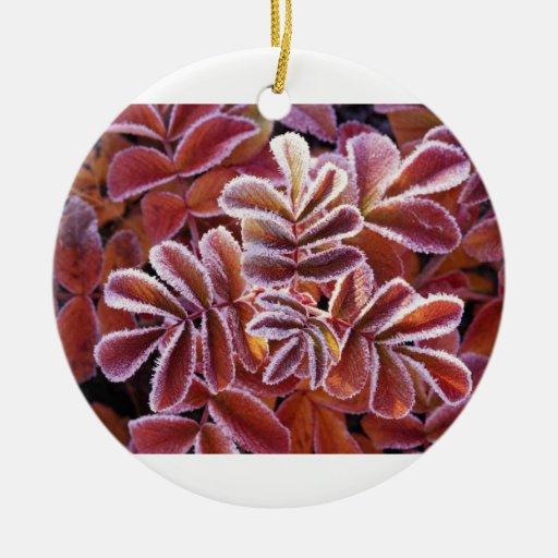 Hojas del invierno adorno navideño redondo de cerámica