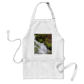 Hojas del musgo del agua de los arroyos de las cor delantal
