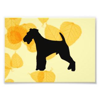 Hojas del oro de Airedale Terrier Fotografía