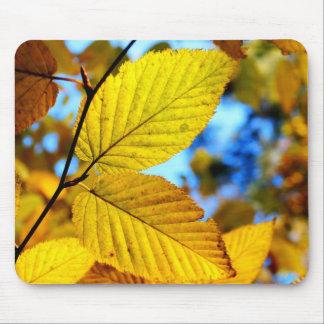 Hojas del oro en cojín de ratón del otoño tapetes de raton