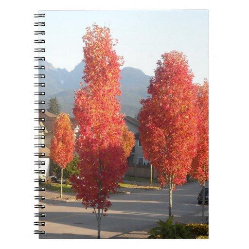 Hojas del otoño cuadernos