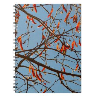 Hojas del otoño libro de apuntes