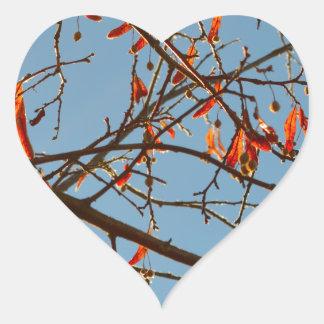 Hojas del otoño pegatina en forma de corazón