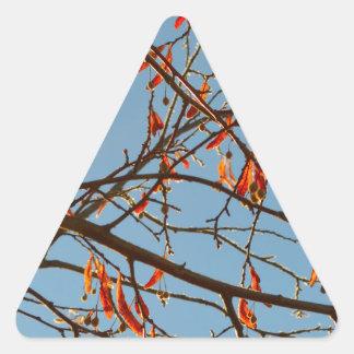 Hojas del otoño pegatina triangular