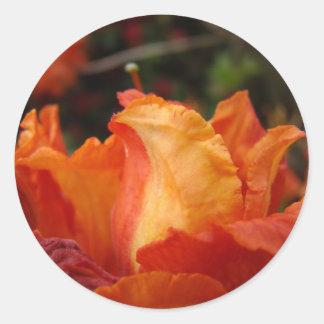 Hojas del pegatina de la flor de los PEGATINAS de