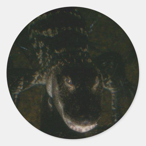 Hojas del pegatina del cocodrilo