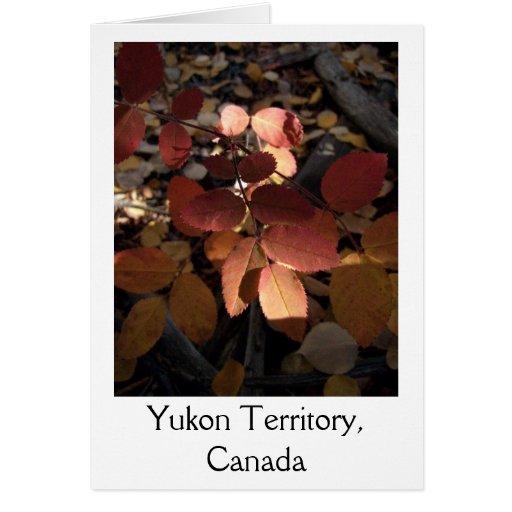 Hojas del proyector; Territorio del Yukón, Canadá Tarjeta De Felicitación