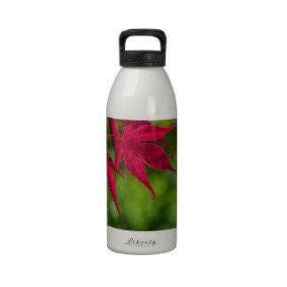 hojas del rojo botellas de beber