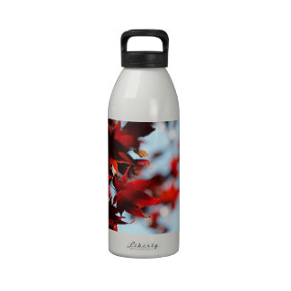 Hojas del rojo carmesí botella de beber