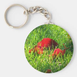 Hojas del rojo en hierba verde llavero redondo tipo pin