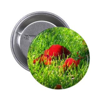 Hojas del rojo en hierba verde pin