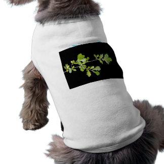 Hojas del verde contra fondo oscuro camisetas de perro