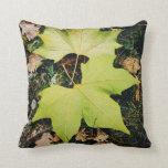 Hojas del verde del roble almohada