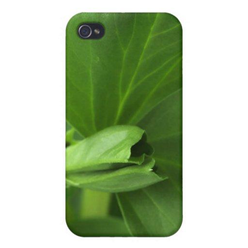 Hojas del verde iPhone 4 fundas