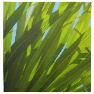 Hojas del verde, luz del sol y cielo azul servilletas