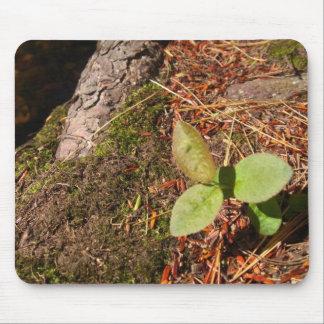 Hojas del verde mouse pads