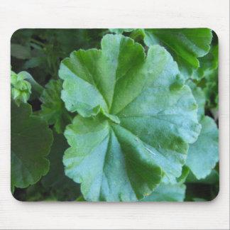 Hojas del verde mousepad