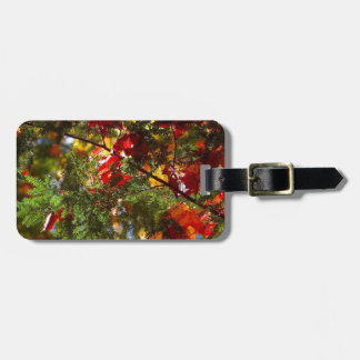 Hojas en árbol de hoja perenne etiquetas de maletas