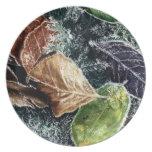 Hojas escarchadas platos