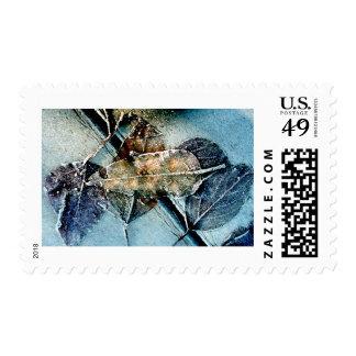 Hojas escarchadas timbres postales