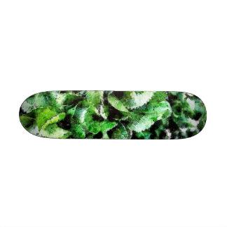 Hojas gruesas de la col verde tabla de patinar