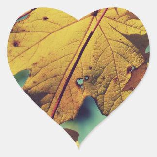 Hojas hechas andrajos pegatina en forma de corazón