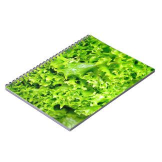 Hojas hidropónicas verdes de la lechuga libreta espiral