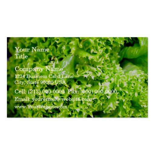 Hojas hidropónicas verdes de la lechuga tarjeta de negocio