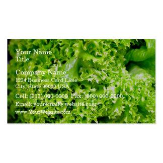 Hojas hidropónicas verdes de la lechuga tarjetas de visita