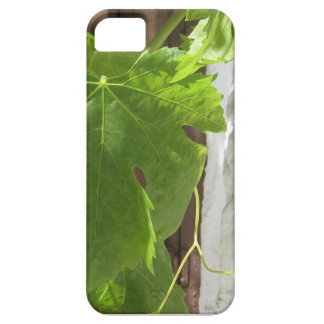 Hojas iPhone SE/5/5s Case