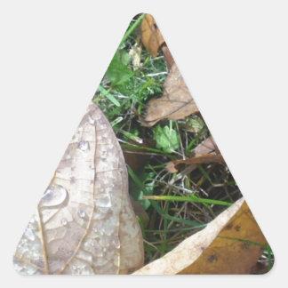 hojas calcomanía trianguloada