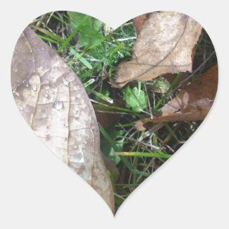 hojas calcomania de corazon personalizadas