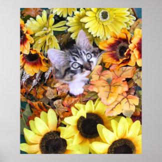 Hojas penetrantes de la caída del gatito del gatit poster