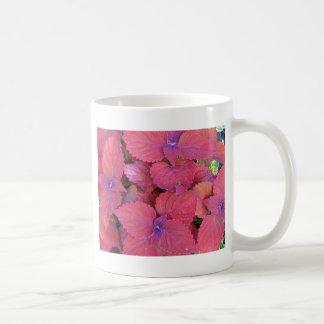 Hojas púrpuras rojas del coleo taza