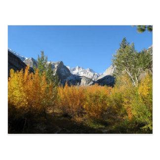 hojas que cambian con las montañas nevosas postal