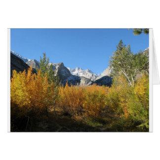 hojas que cambian con las montañas nevosas tarjeta de felicitación