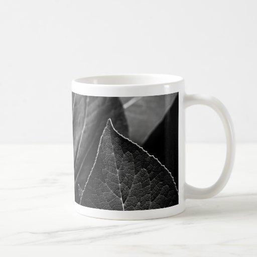 hojas que son tazas de café