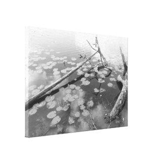 Hojas, registros y lago impresion de lienzo