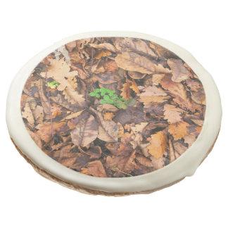 Hojas secas del otoño y tréboles verdes