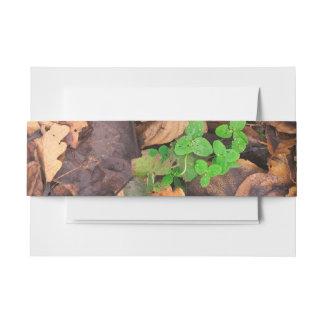 Hojas secas del otoño y tréboles verdes cintas para invitaciones