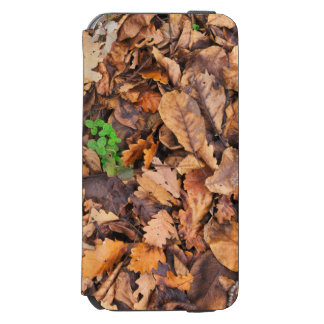 Hojas secas del otoño y tréboles verdes funda billetera para iPhone 6 watson