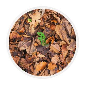 Hojas secas del otoño y tréboles verdes láminas de azúcar para galletas