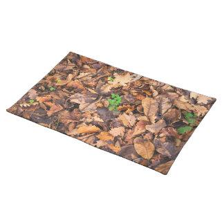 Hojas secas del otoño y tréboles verdes manteles