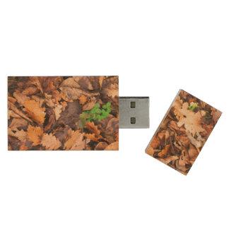 Hojas secas del otoño y tréboles verdes pen drive de madera USB 3.0