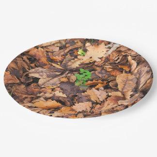 Hojas secas del otoño y tréboles verdes plato de papel de 9 pulgadas