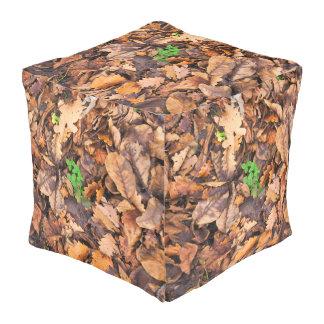 Hojas secas del otoño y tréboles verdes pouf cuadrado